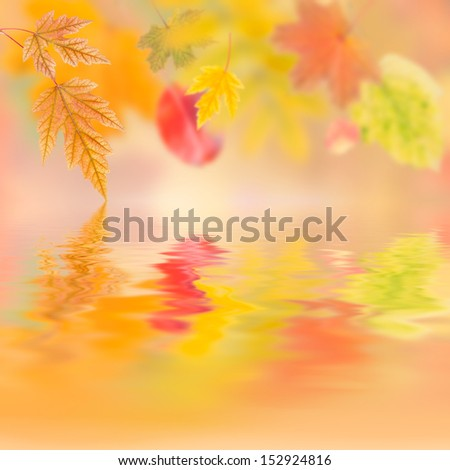 Autumn background with bright leaves for design - stock photo