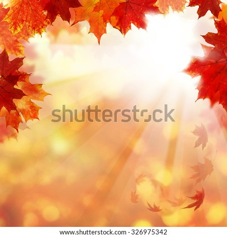 Autumn Background with Maple Leaves and Sun Light. Abstract Fall Border - stock photo