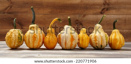 autumn background with pumpkin - stock photo