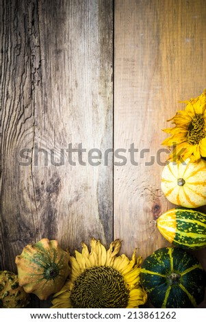 Autumn background with pumpkins on the old board