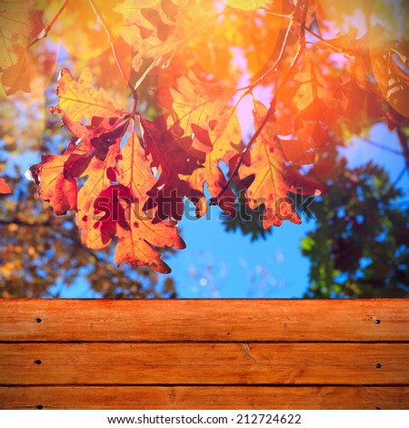Autumn background with yellow leaves and wooden fence