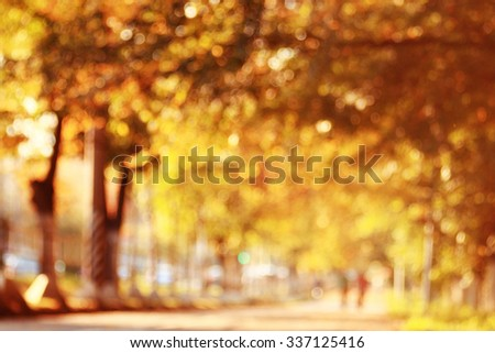 Autumn background with yellow leaves on the trees, blurred - stock photo
