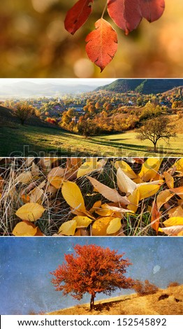 Autumn banners - stock photo