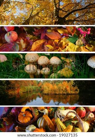 autumn banners - stock photo
