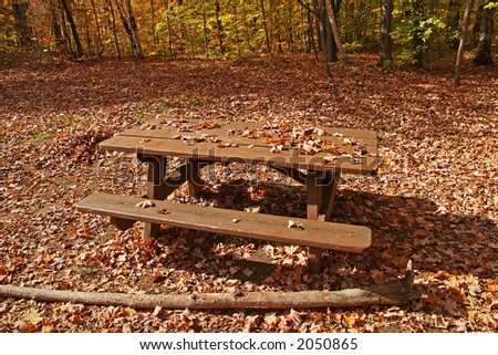 Autumn bench in Gatineau park - stock photo