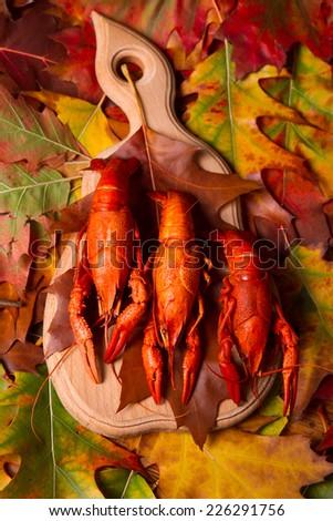 autumn boiled crawfish - stock photo