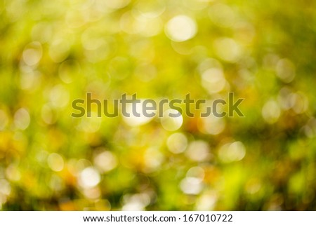 Autumn bright bokeh background. Natural beauty background. - stock photo