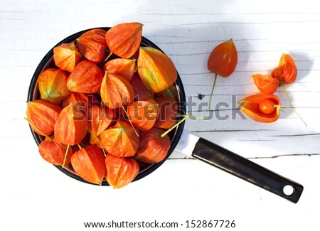Autumn Cape Gooseberries on the white wooden background - stock photo