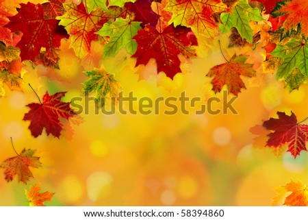 Autumn card of colored leafs with copy space for your text - stock photo