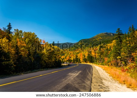 Autumn color along a road in White Mountain National Forest, New Hampshire. - stock photo