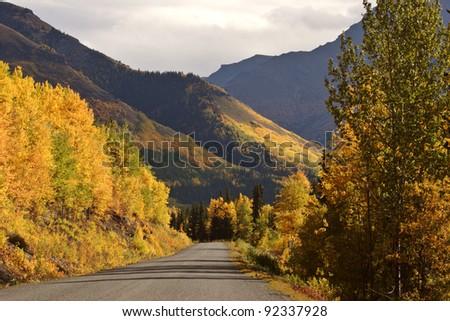 Autumn colored Aspens along British Columbia road - stock photo