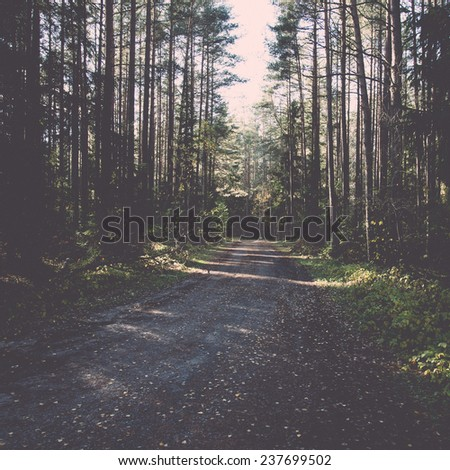 autumn colored tourism trail in the woods in the countryside - retro, vintage style look - stock photo