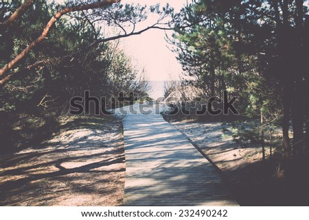 autumn colored tourism trail in the woods in the countryside. Vintage photography effect. - stock photo