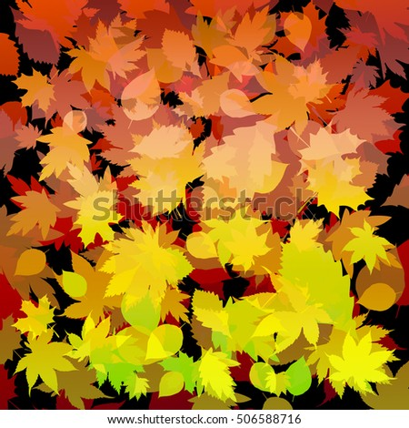 Autumn colorful composition with red yellow green leaves on a dark background