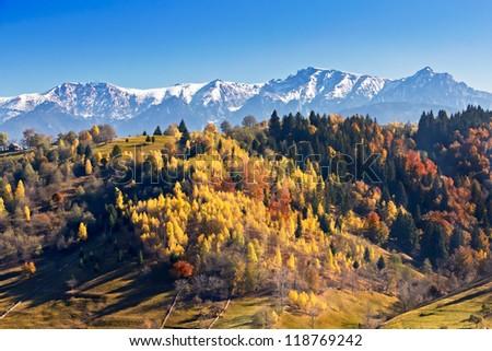 Autumn colorful landscape in Moieciu - stock photo