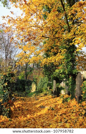 Autumn colorful mystery old Prague Cemetery Olsany, Czech Republic - stock photo
