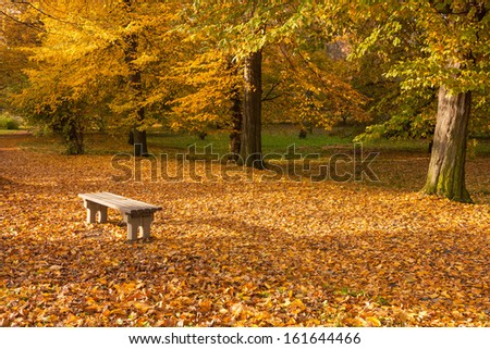autumn colors in the park bench - stock photo