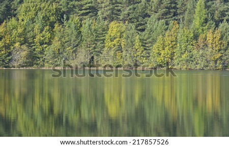 autumn colors reflection on a calm lake in sweden - stock photo