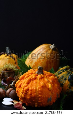 Autumn composition over black. Thanksgiving day concept - stock photo
