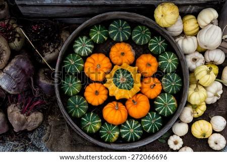 Autumn composition with pumpkins  - stock photo