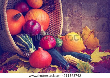 Autumn concept with seasonal fruits and vegetables/ organic food background; Autumn harvest with Farmers Vegetable fruits on dark wooden background/ Thanksgiving day concept - stock photo
