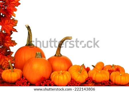 Autumn corner border with pumpkins and red leaves over white                   - stock photo