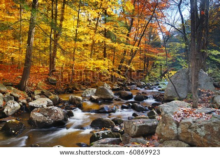 Autumn creek woods with yellow trees foliage and rocks in forest mountain. - stock photo