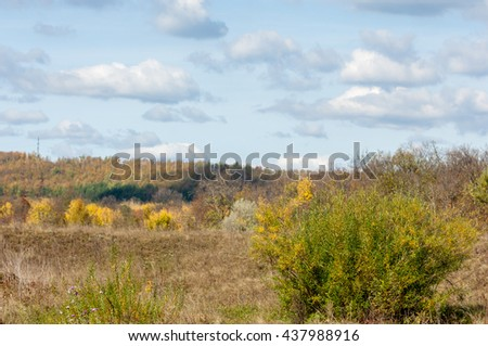 Autumn deciduous forest, sunny day - stock photo