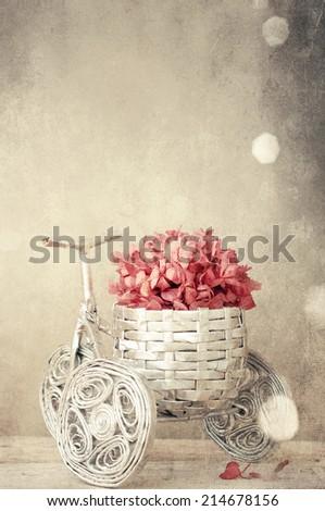 Autumn decoration - stock photo