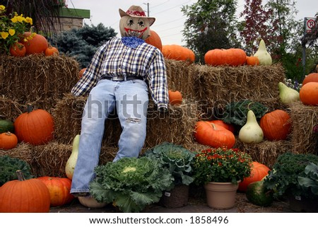 Autumn display of a scarecrow sitting on bales of hay surrounded by pumpkins and flowers