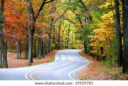 Autumn Drive - stock photo