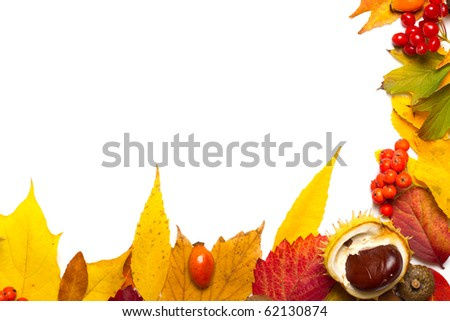 autumn elements border isolated on white - stock photo