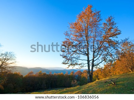 Autumn evening  landscape with lust sunlight on mountains and evening glow in sky - stock photo