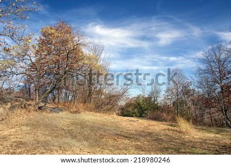 Autumn/Fall at Highbridge Park in New York City - stock photo