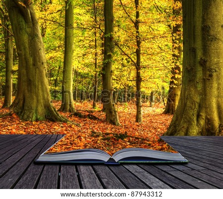 Autumn Fall forest landscape coming out of pages in magic book