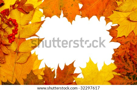 autumn fall leaf frame