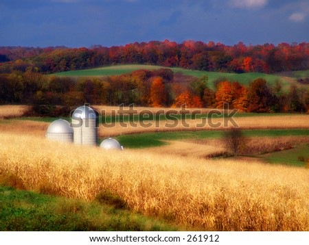 Autumn Farmland Silos