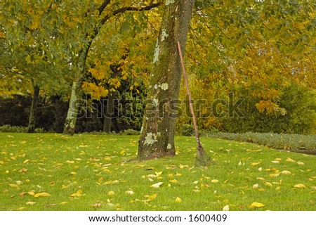 Autumn field - stock photo