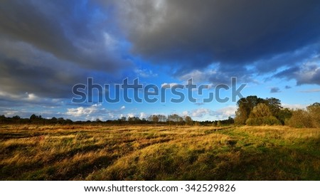 Autumn field landscape