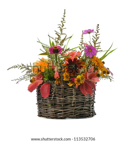 autumn floral composition in basket isolated on white background