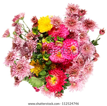 Autumn flowers on a white background