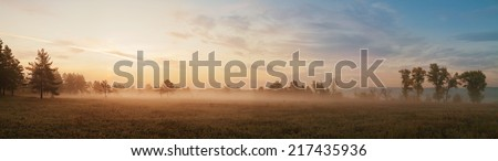 Autumn foggy sunrise in the forest - stock photo