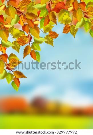 autumn foliage. Gold autumn. Landscape. - stock photo
