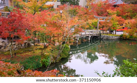 autumn foliage near the bridge at Eikando Temple in Kyoto, Japan - stock photo