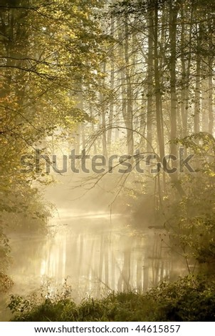 Autumn forest illuminated by the rising sun with mist floating over the river. - stock photo
