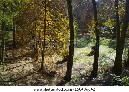 autumn forest in Monasterio de Piedra, Zaragoza, Aragon, Spain