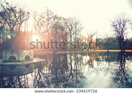 autumn forest in suset on the lake with trees reflection on water  - stock photo