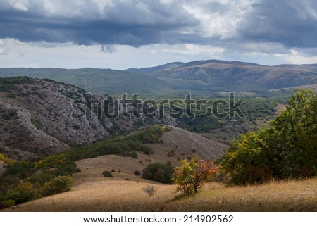Autumn forest photographed during the day in the mountains - stock photo