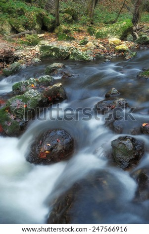 Autumn forest stream - stock photo