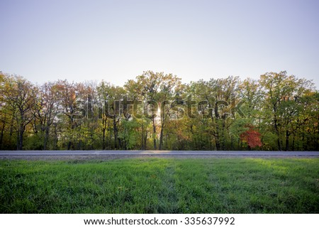 Autumn forest with Sun light, colorful trees and leaves  - stock photo